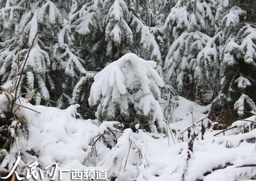 描写雪景的结尾