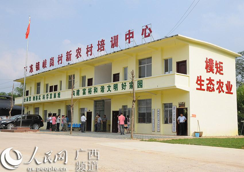 龙州县朴矩生态农业专业合作社--人民网广西频道--网