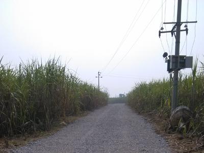 [蔗园村]持续推进乡村道路硬化工程