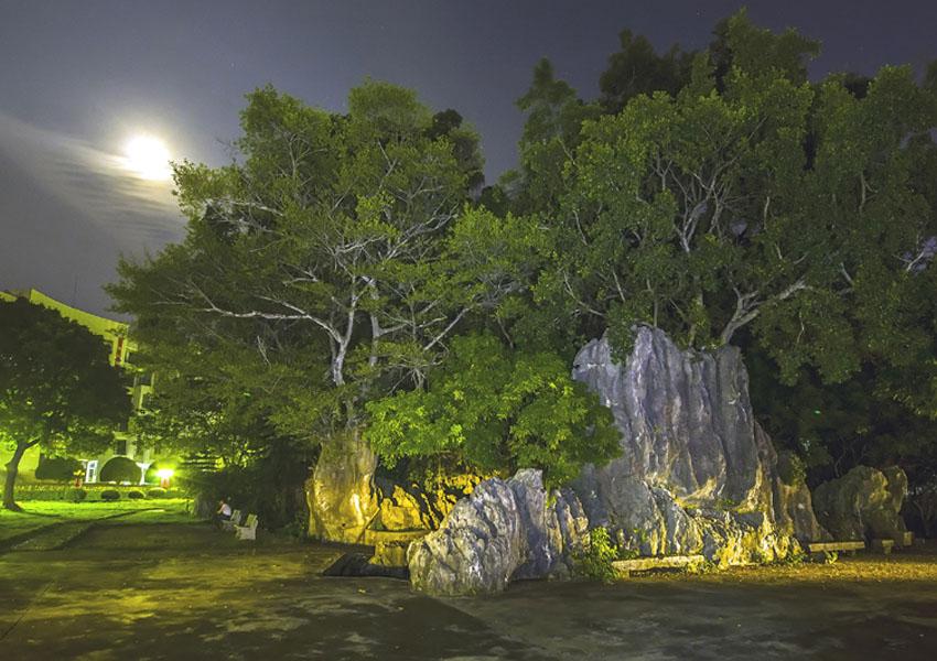 人民网广西频道 龙州县旅游招商平台  龙州位于左江上游,山环水绕