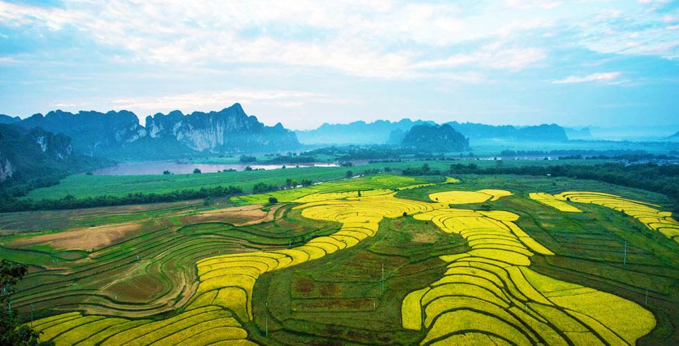 广西龙州-龙州县旅游招商平台
