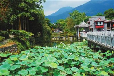 广西桂平靓丽风景图片