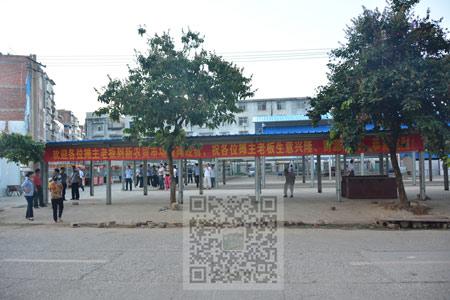 扶绥县地图_扶绥县人口