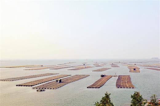 广西:海洋经济在召唤