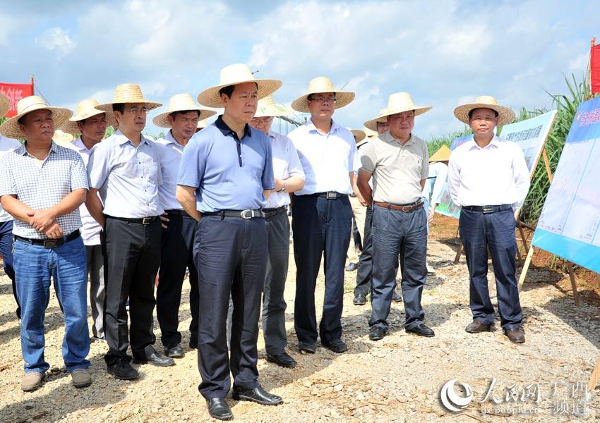 """崇左市""""双高""""基地建设现场推进会在扶绥县召开"""