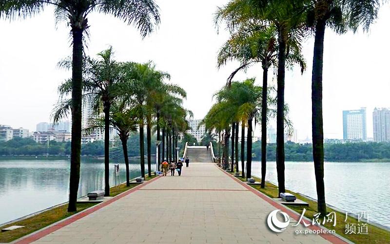 广西要闻    人民网南宁10月22日电  一场大雨过后,南湖公园环湖路上