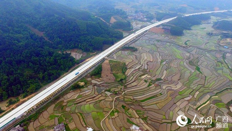 4月24日,在广西柳州市融安县潭头乡新林村拍摄的田园美景(谭凯兴/摄)