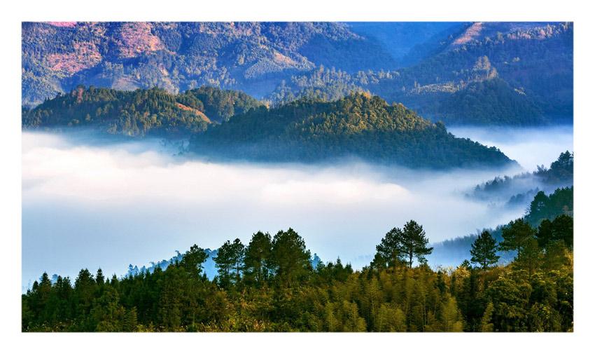 广西自然生态保护区——鹿寨拉沟原始森林景区