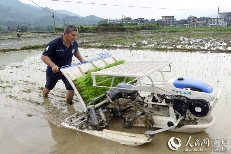 广西三江:农机助春耕