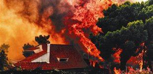 欧洲今年已现450起大规模火灾 各国反思