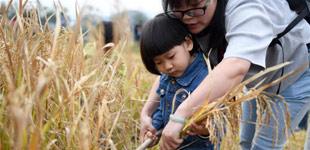 浙江湖州:生态休闲游人气旺