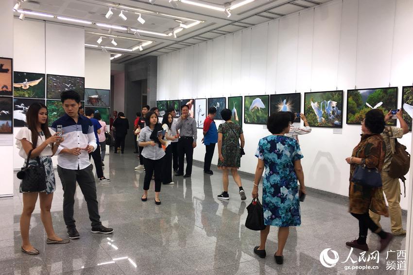 泰国民众在曼谷中国文化中心参观黄嵩和广西自然摄影展