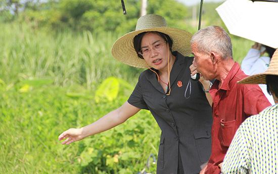 听法官们讲办案故事:广西壮汉双语法官用民族语言传递法治声音