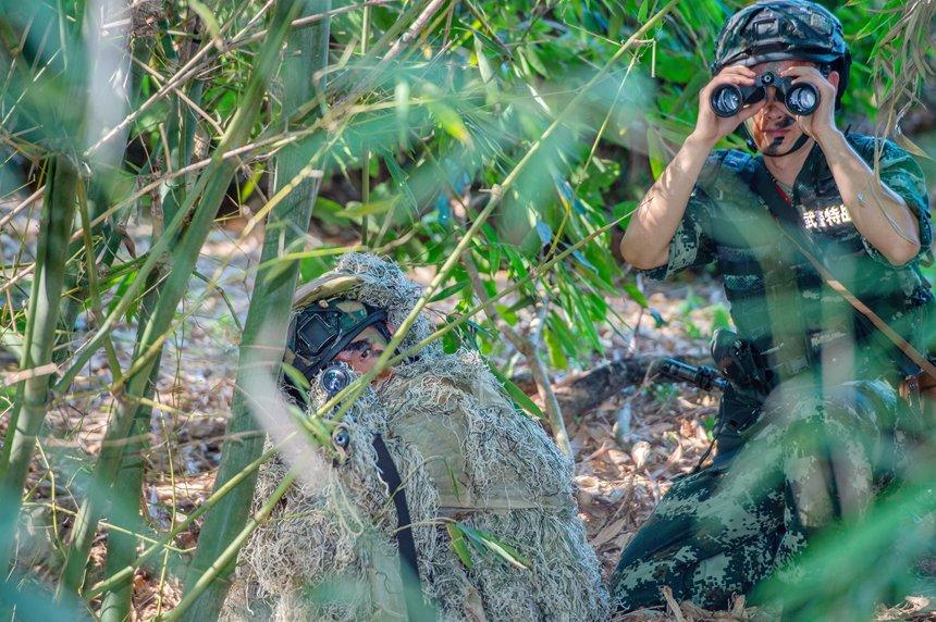 狙击小组隐蔽观察敌情。