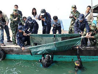 南宁动物园治愈搁浅海豚放归大海