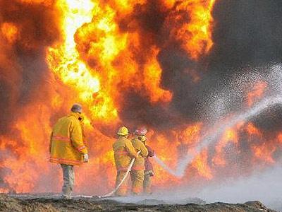 墨西哥森林火灾分享展示